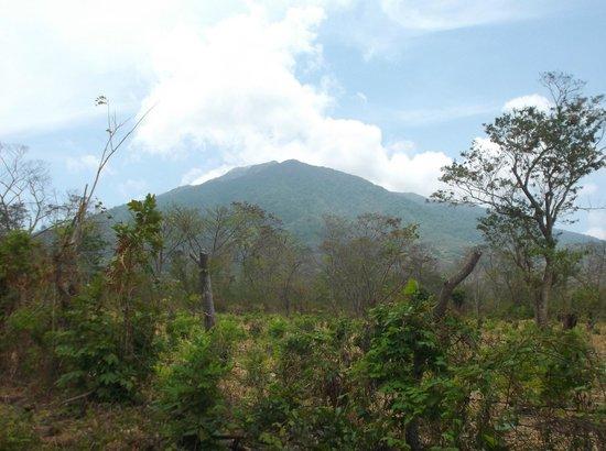 Finca Mystica: Volcan Maderas