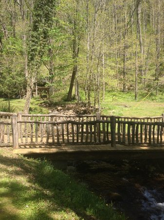 The Buck House Inn on Bald Mountain Creek: Bridge beside Buck House