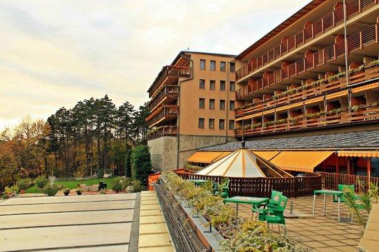 Silvanus Hotel Visegrad: Hotel