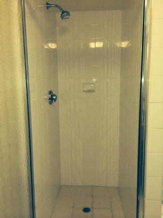Hilton Garden Inn Bridgewater: Shower