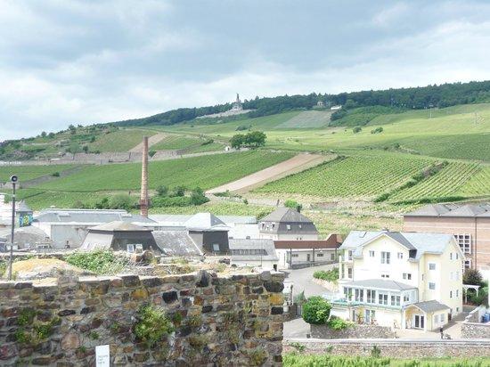 Rheingau Wine Museum Broemserburg Castle : view from tower