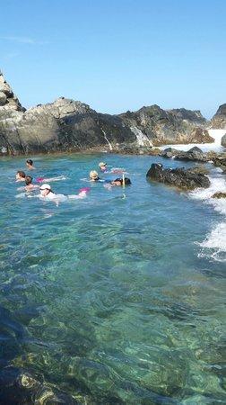 De Palm Tours: Snorkeling (part of the tour)
