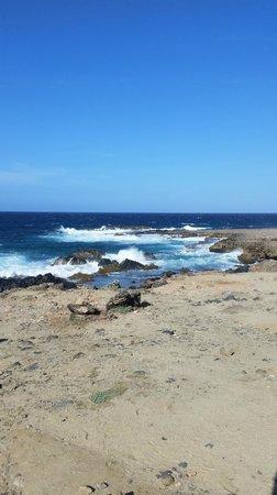 De Palm Tours: Ocean view