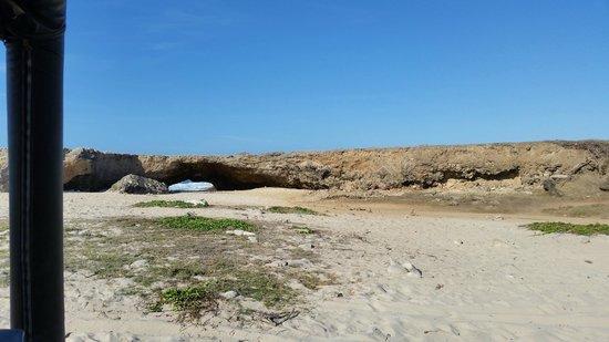 De Palm Tours: Son of a bridge