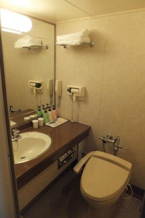 Camelot Hotel: good amenities