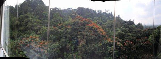 Padma Hotel Bandung: view