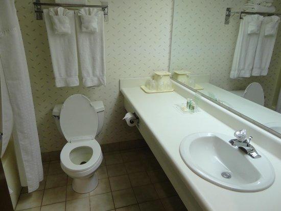Holiday Inn Canyon de Chelly: The bathroom
