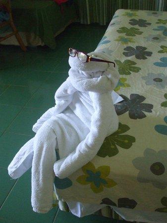 Hotel Playa Costa Verde: Towel art