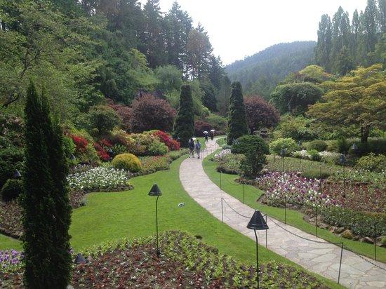 Butchart Gardens : One of dozens of photos we took!