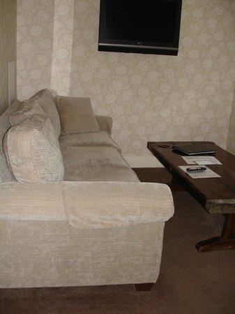 Three Stallion Inn: sitting area with tv, nice sofa and coffee table