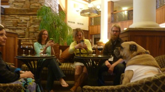 MCM Elegante Lodge & Resort: Lounging in the Lobby Bar area with other visitors....or are they PUParazzi?