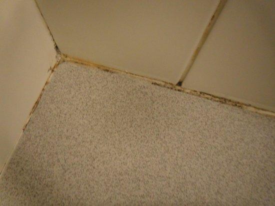 Ibis Santiago Providencia : sujeira e falta de limpeza, quando isto foi limpo?