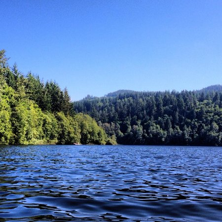 Coachman Inn: Lake Padden Park, which is extremely close to the Coachman Inn
