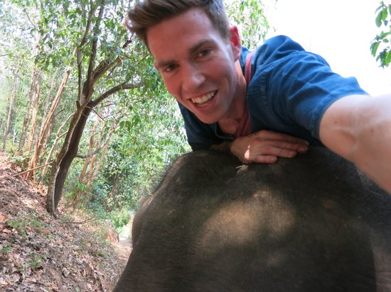 Thai Elephant Home: Elephant selfie!