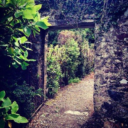 Colonsay House Gardens Cafe: Gardens
