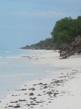 Ras Nungwi Beach Hotel: Beach