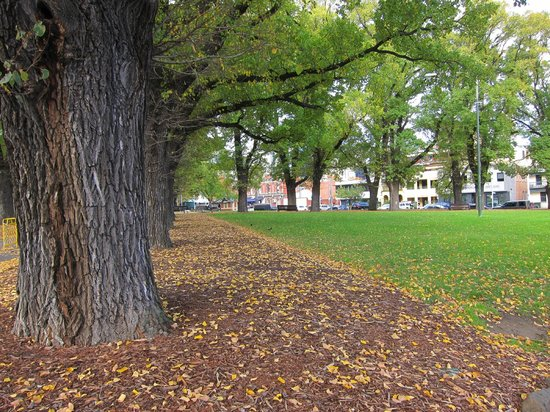 Royal Botanic Gardens Melbourne : Royal gardens