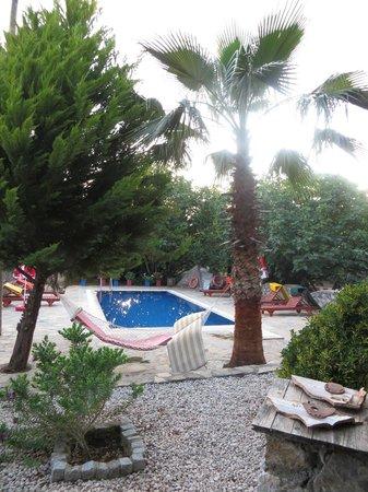 Villa Dimitri: Villa Pool