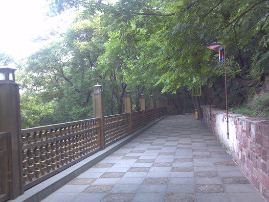 Jingzhong Mountain: 石畳の参道