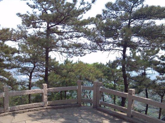 Jingzhong Mountain: 山頂付近からの鳥瞰