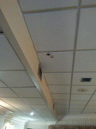 Prince Rupert Hotel: Bar Area Ceiling