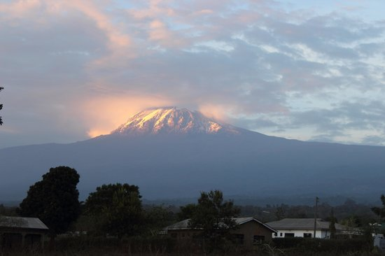 Honey Badger Lodge: View of kili from just outside the lodge