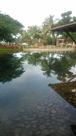 Park Hyatt Goa Resort and Spa : View from lobby