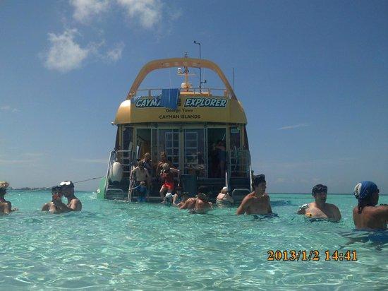 Stingray City: Cayman Explorer & beautiful water!