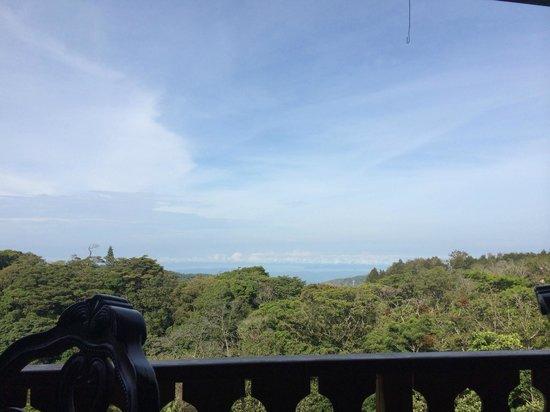 Hotel Belmar : View from Restaurant