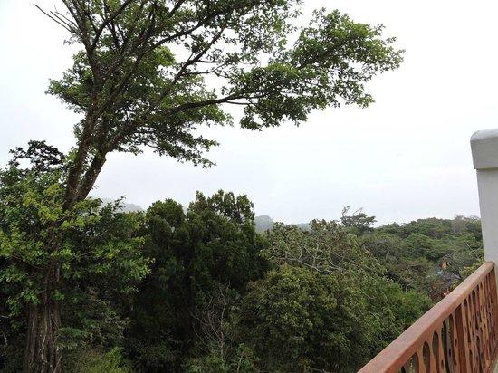 Hotel Belmar : Canopy Room Balcony View