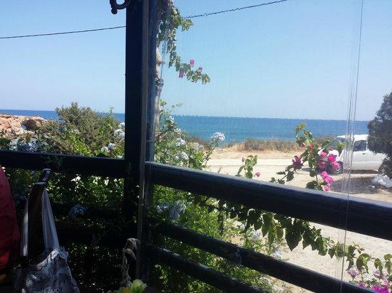 Calypso Restaurant: Vista 2