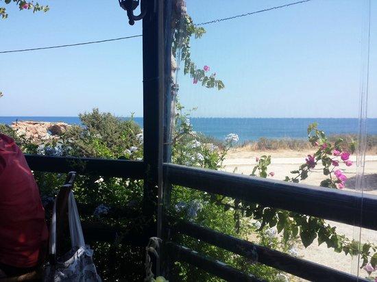 Calypso Restaurant: Vista