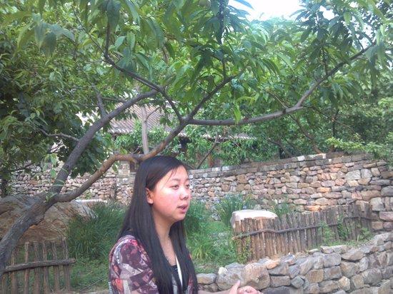 Qianxi County, Chine: 案内のガイドさんと町並み
