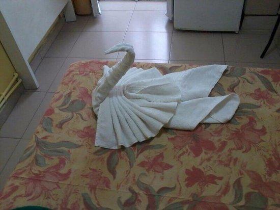 Hostal Al-hambra : Espectacular bienvenida
