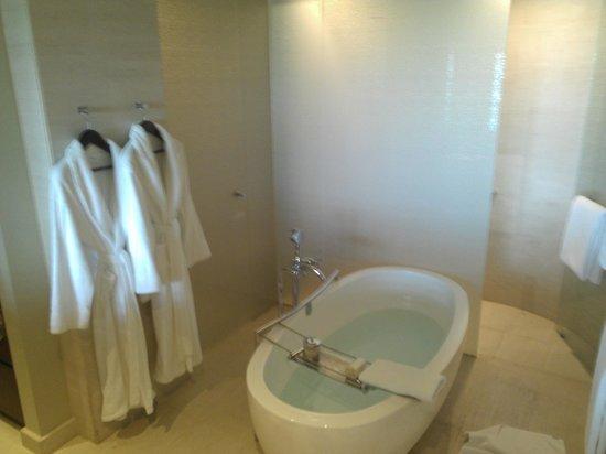 Park Hyatt Dubai : Bath