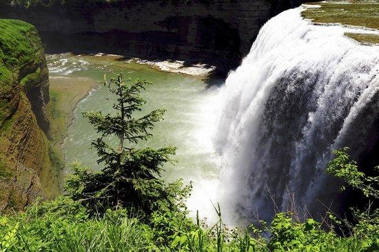 Letchworth State Park: Falls by the Glen Iris Inn