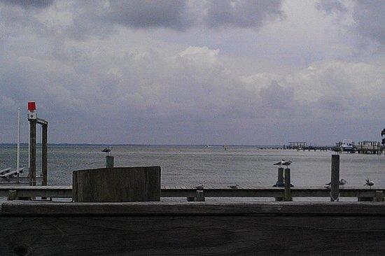 Dewey Destin's: view from the pier