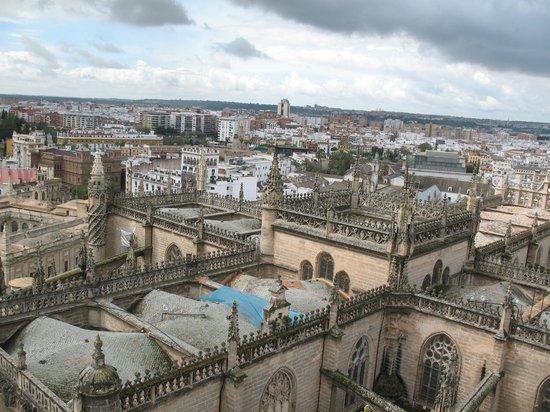 Torre Giralda : Вид с башни