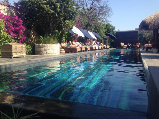 Alavya: The lovely pool