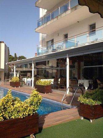 Best Western Hotel Mediterraneo : pool and restaurant view