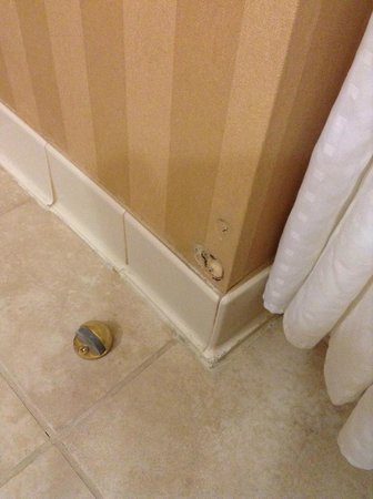 Holiday Inn Express Hotel & Suites Chester - Monroe - Goshen: whose been eating the wall