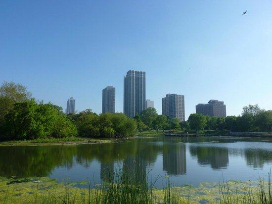 Lincoln Park: City view from the Park