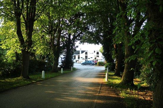 brampton manor - photo #24