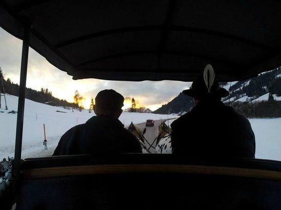 Landhotel Tirolerhof: Rides