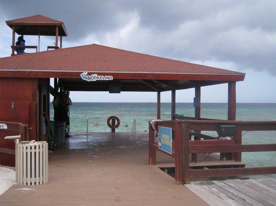 De Palm Island: Snorkel area