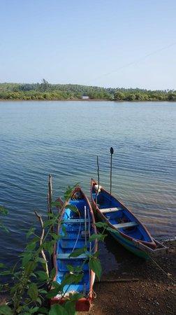 Riverview Villas : View across the Talpona river