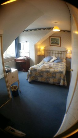 The Edwardian: Good sized room for a single room with double bed as an extra!