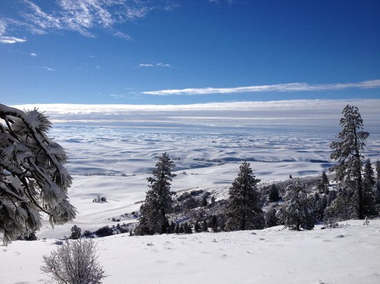 Kamiak Butte County Park: Winter Hike