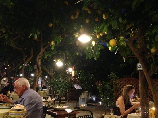 Da Paolino Lemontrees : la vista esterna del ristorante