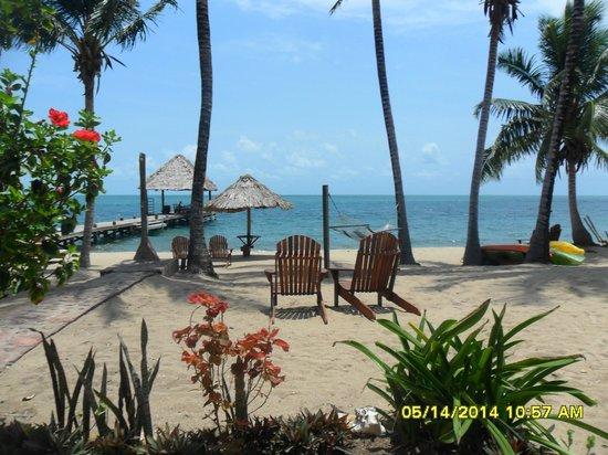 Beaches And Dreams: Beach